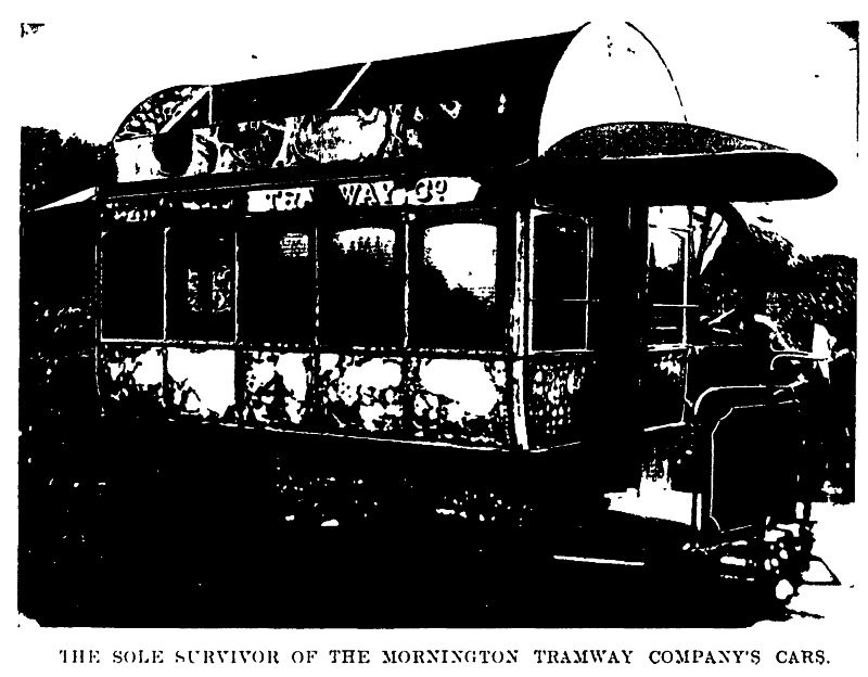 Mornington Tramway Survivor